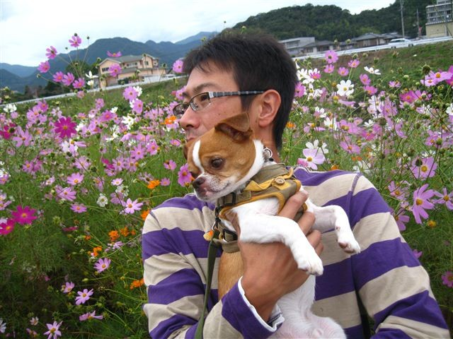 f:id:yasukazu01:20111017124049j:image
