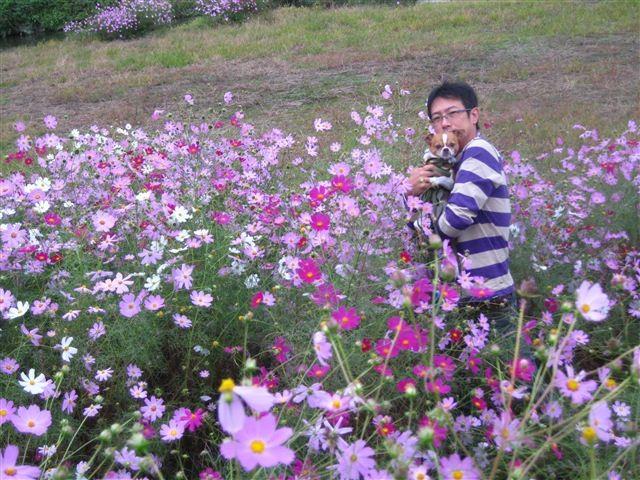 f:id:yasukazu01:20111017124516j:image
