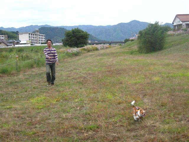f:id:yasukazu01:20111017125513j:image