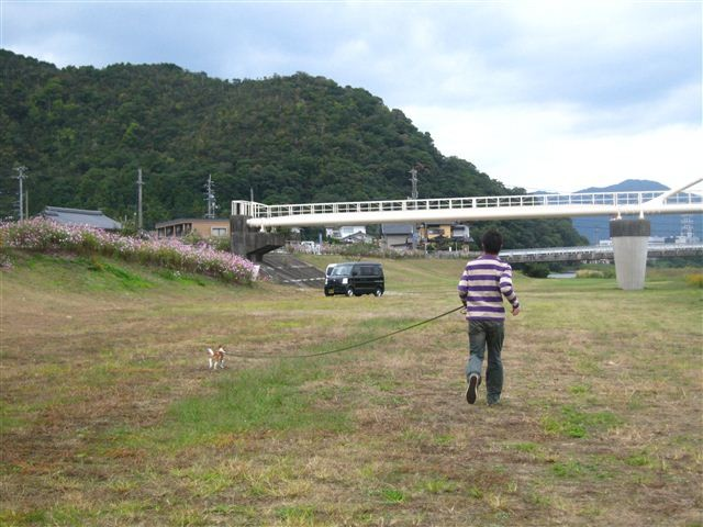 f:id:yasukazu01:20111017125521j:image