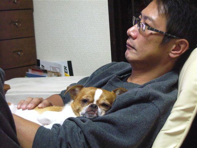 f:id:yasukazu01:20111017224012j:image