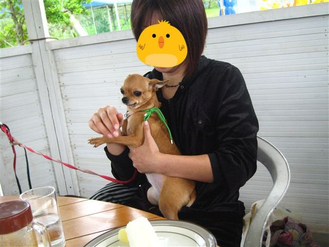 f:id:yasukazu01:20111023114743j:image
