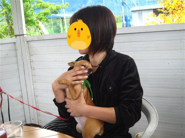 f:id:yasukazu01:20111023114749j:image