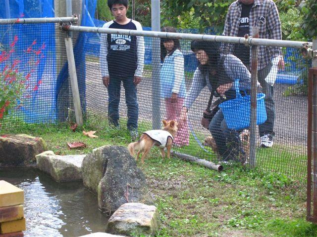 f:id:yasukazu01:20111023123236j:image