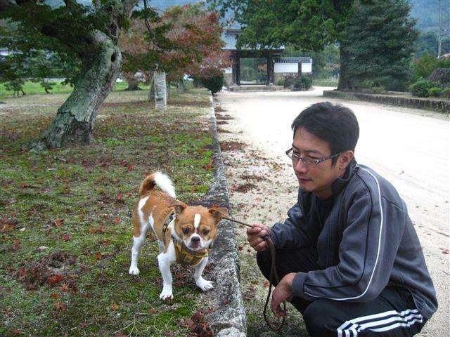 f:id:yasukazu01:20111029131453j:image