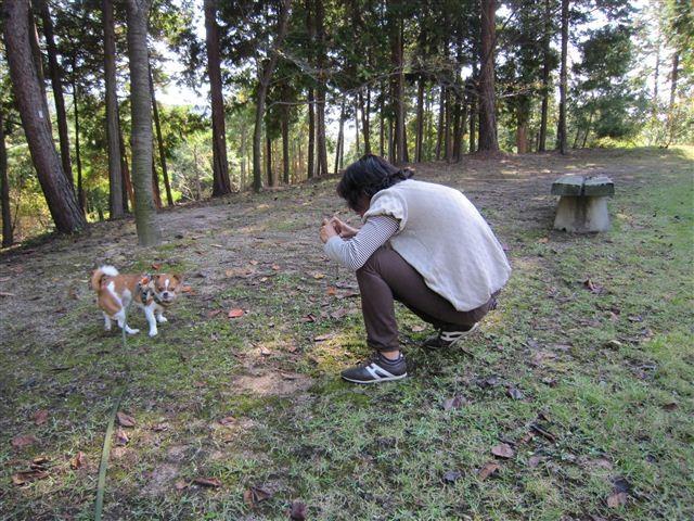 f:id:yasukazu01:20111101112517j:image