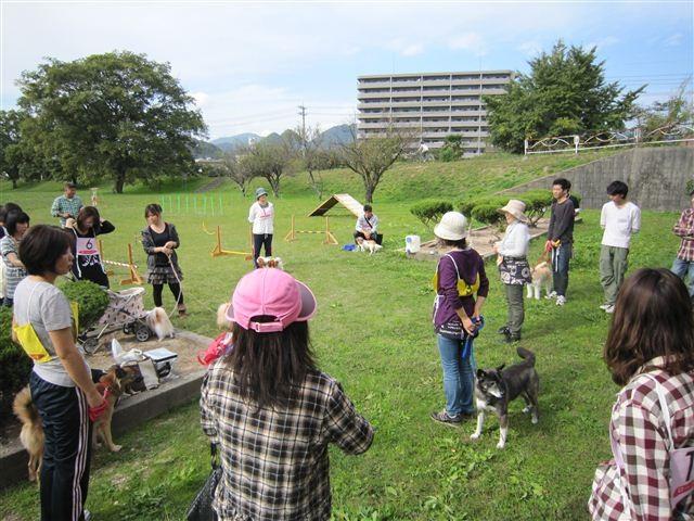 f:id:yasukazu01:20111103130718j:image