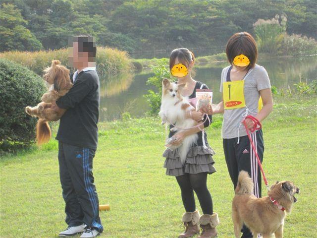 f:id:yasukazu01:20111103151202j:image