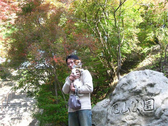 f:id:yasukazu01:20111115103817j:image