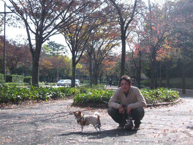 f:id:yasukazu01:20111115105503j:image