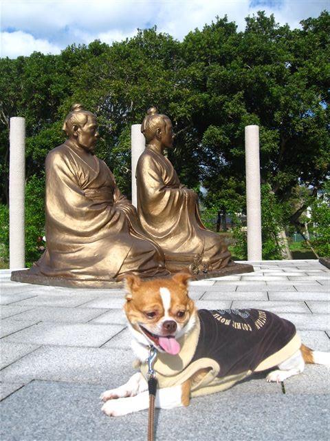 f:id:yasukazu01:20111120114535j:image