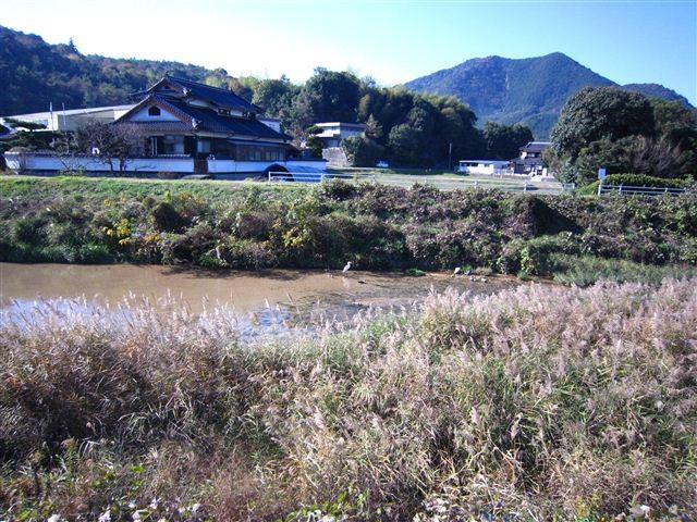 f:id:yasukazu01:20111126103640j:image