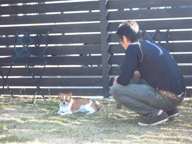 f:id:yasukazu01:20111129130900j:image