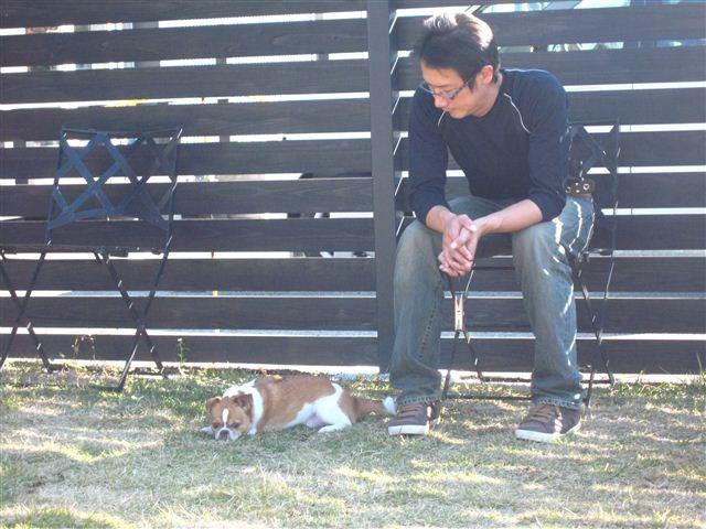 f:id:yasukazu01:20111129130907j:image