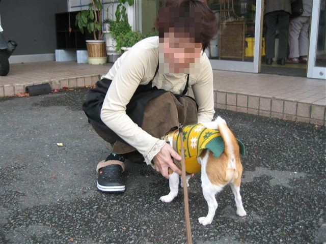 f:id:yasukazu01:20111204161315j:image