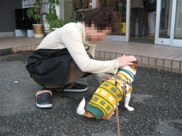 f:id:yasukazu01:20111204161322j:image