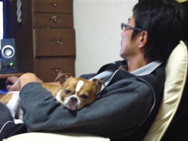 f:id:yasukazu01:20111206210330j:image