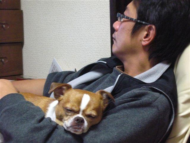 f:id:yasukazu01:20111206210339j:image