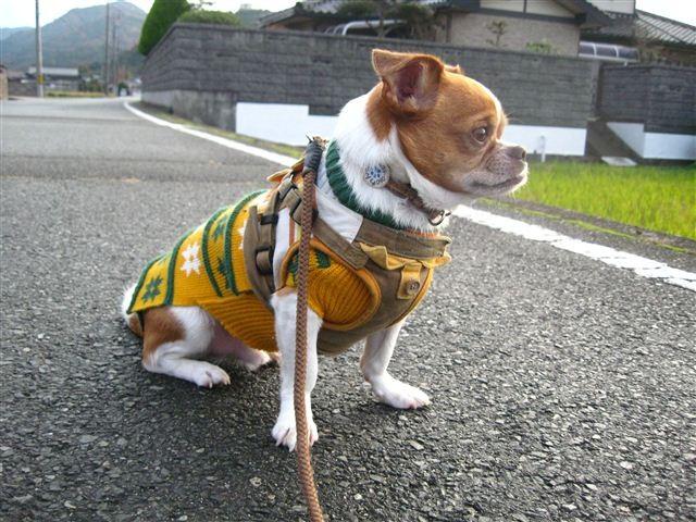f:id:yasukazu01:20111207162442j:image