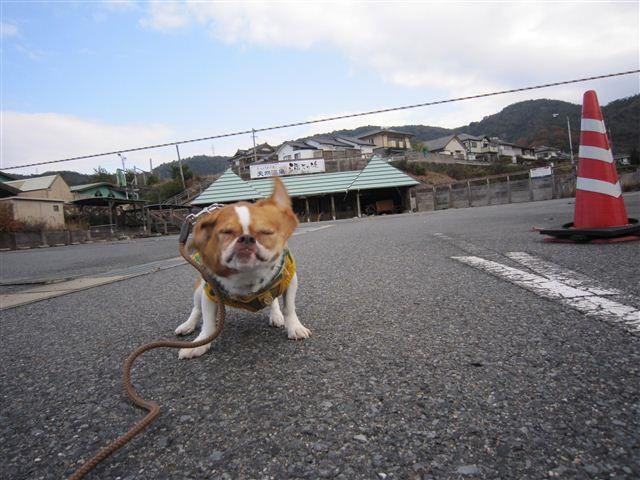 f:id:yasukazu01:20111210103337j:image