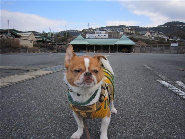 f:id:yasukazu01:20111210103346j:image