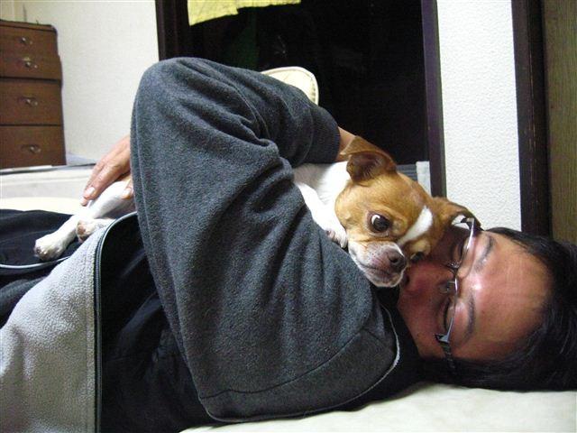 f:id:yasukazu01:20111210194718j:image