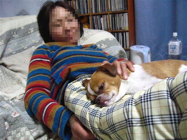 f:id:yasukazu01:20111210195356j:image