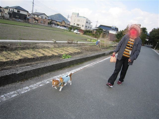 f:id:yasukazu01:20111214125940j:image