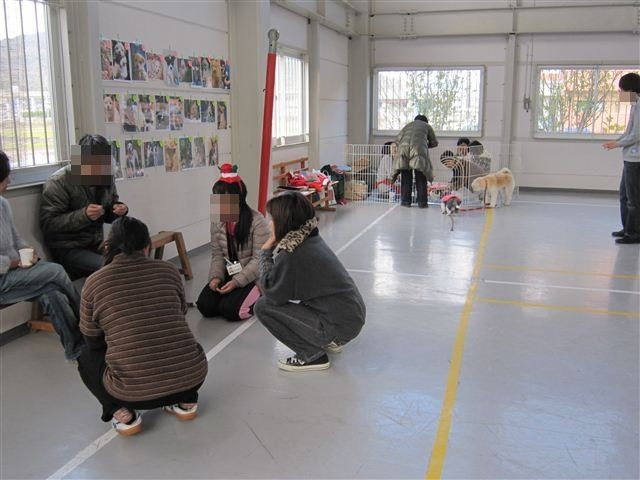 f:id:yasukazu01:20111217110616j:image