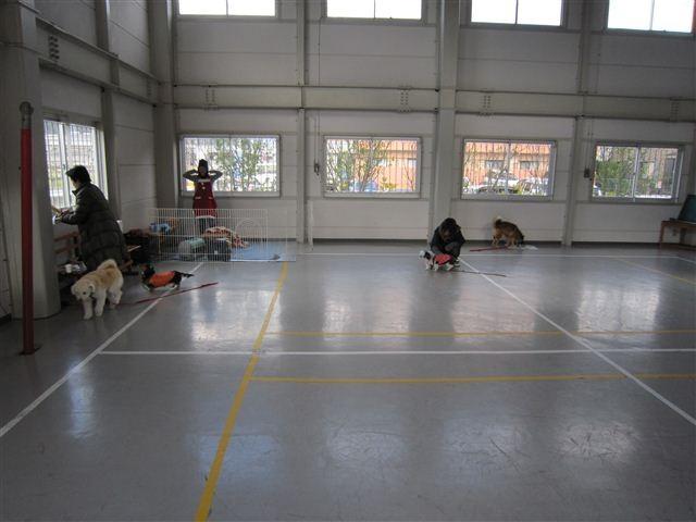 f:id:yasukazu01:20111217113423j:image