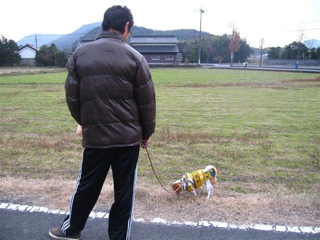 f:id:yasukazu01:20111221132556j:image