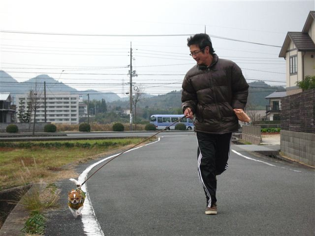 f:id:yasukazu01:20111221132815j:image