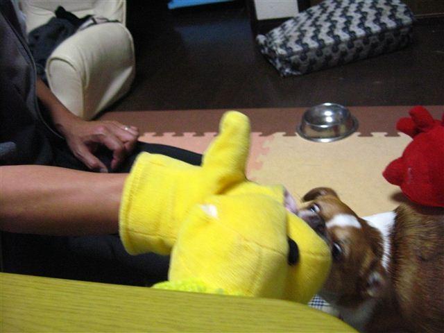f:id:yasukazu01:20111221201404j:image