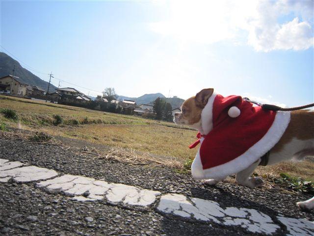 f:id:yasukazu01:20111224124553j:image