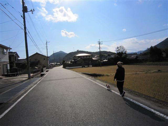 f:id:yasukazu01:20111224124803j:image