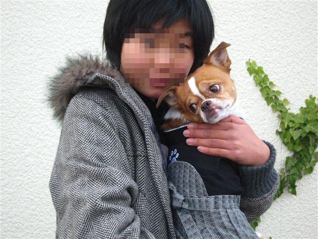 f:id:yasukazu01:20111225150348j:image