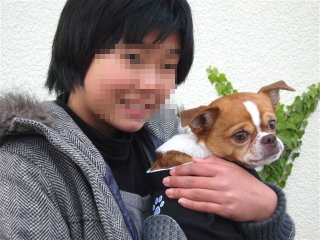 f:id:yasukazu01:20111225150401j:image