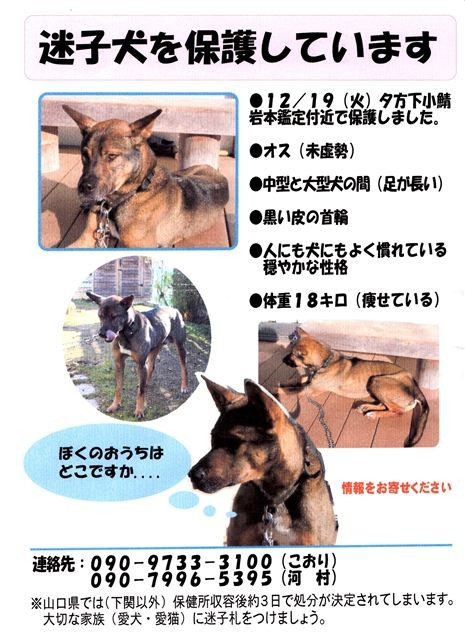 f:id:yasukazu01:20111227181429j:image