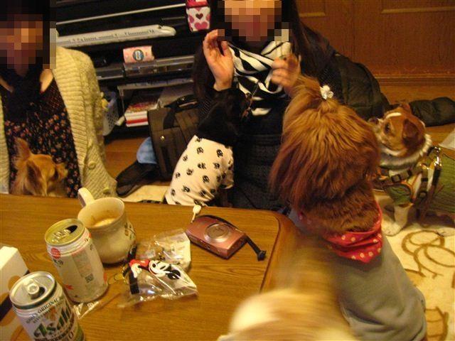 f:id:yasukazu01:20111229161931j:image