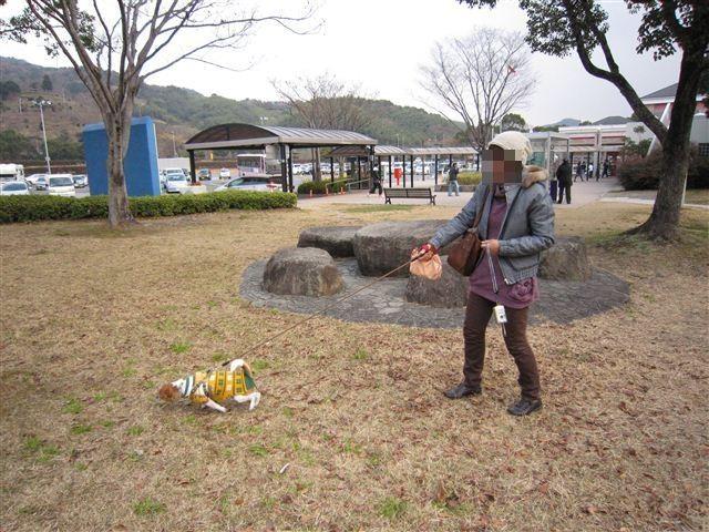 f:id:yasukazu01:20120103112050j:image