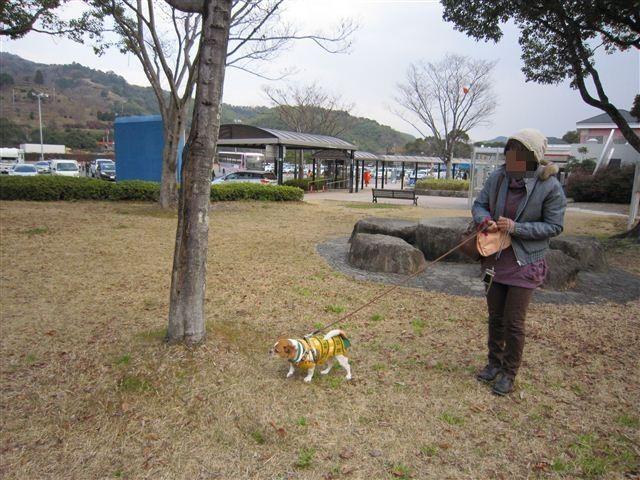f:id:yasukazu01:20120103112101j:image