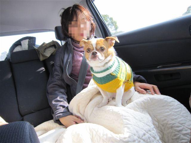 f:id:yasukazu01:20120103113940j:image