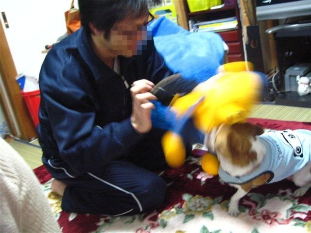 f:id:yasukazu01:20120103131109j:image