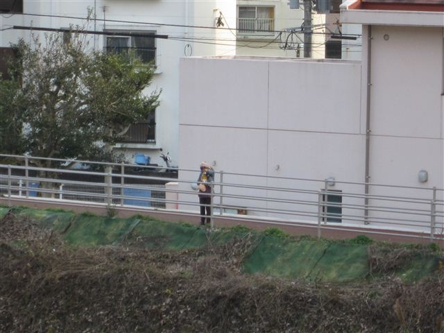 f:id:yasukazu01:20120103150817j:image