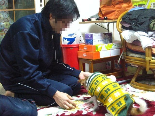 f:id:yasukazu01:20120103165849j:image