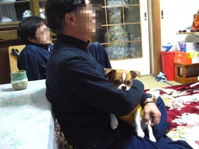 f:id:yasukazu01:20120103193857j:image