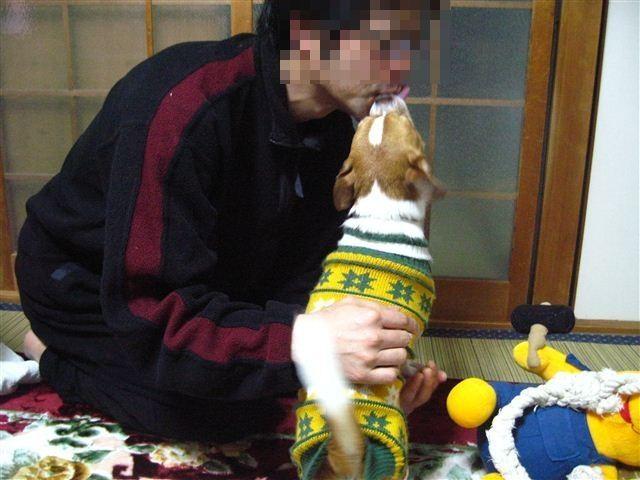 f:id:yasukazu01:20120104071428j:image
