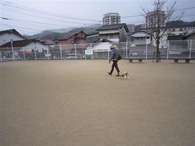 f:id:yasukazu01:20120104101231j:image