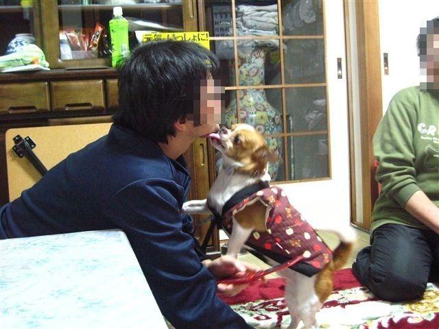 f:id:yasukazu01:20120104173514j:image