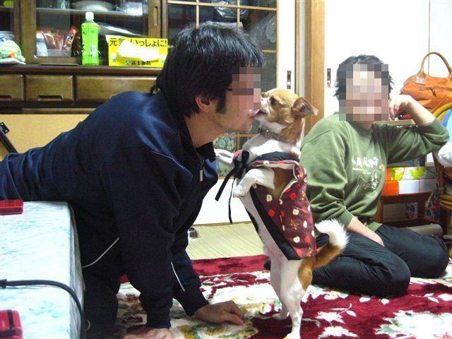 f:id:yasukazu01:20120104173739j:image
